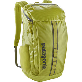 Patagonia Black Hole Backpack green